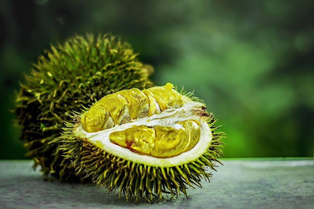 Wie schmeckt Durian? Herkunft, Geschmack & Inhaltsstoffe